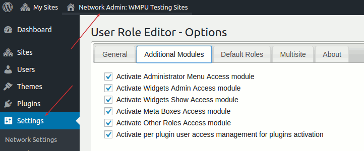 User Role Editor Pro - Settings Page (multisite)